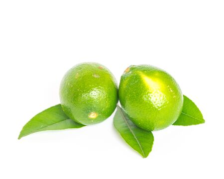 Two whole Asian green limes with leaves isolated on white background. Fresh picked homegrown tropical fruit with clipping path and copy space. 版權商用圖片