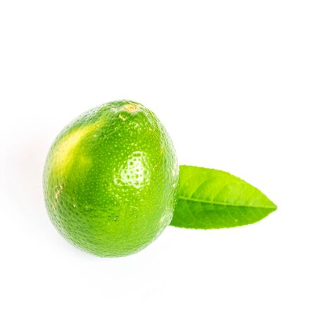 Raw Asian green lime with single leaf isolated on white background. Fresh picked homegrown tropical fruit with clipping path and copy space. 版權商用圖片