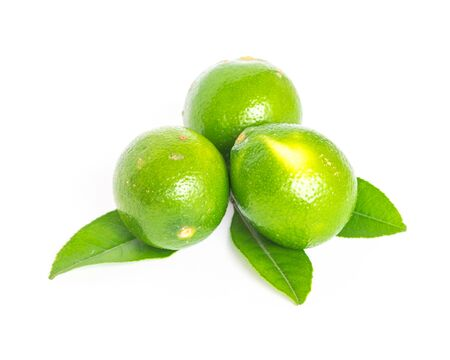 Three whole Asian green limes with leaves isolated on white background. Fresh picked homegrown tropical fruit with clipping path and copy space. 版權商用圖片