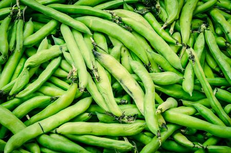 Pile of Vicia faba plant or broad bean, fava bean, faba bean selling at farmer market in Puyallup, Washington, USA. Organic homegrown Fabaceae cool crop pods at local store. Stok Fotoğraf