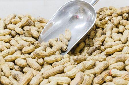 Cacahuetes tostados en caja de plástico con pala de acero inoxidable en el mercado de agricultores en Puyallup Washington, EE. Textura de fondo sabroso bocadillo goober. Foto de archivo