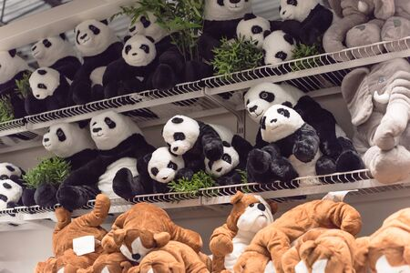 Soft toy panda bears on shelves at retail store in America. Baby bear dolls, plush or cuddly toy at super market. Stuffed animals background texture pattern
