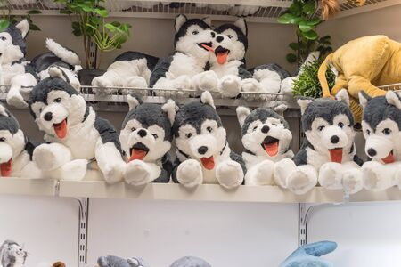 Stuffed dog puppy on shelves at retail store in America. Baby bear dolls, plush or cuddly toy at super market. Soft toys background texture pattern