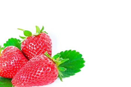 Three whole strawberries and leaves isolated on a white background. Fresh picked organic homegrown strawberries from Washington State, America.