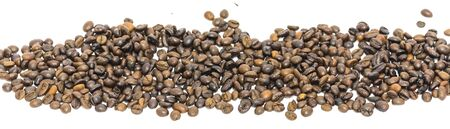 Panorama heap of roasted Vietnamese robusta coffee beans isolated on white background. Medium roast organic coffea canephora family Rubiaceae with clipping path and copy space. Stock Photo