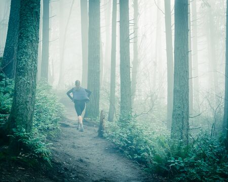 Back view healthy lady hiking up the Poo Poo Point Chirico Trail in Washington State, America. Foggy trail in the lush forest mountain landscape
