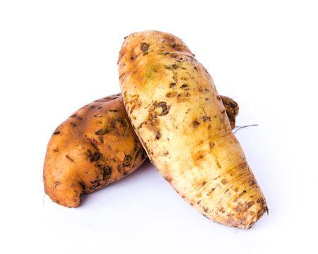 Two Asian sweet potatoes yam (Ipomoea batatas) isolated on white background. Fresh pick and organic starchy, sweet-tasting, tuberous roots homegrown in Vietnam.