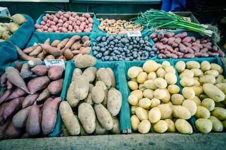 Bunch of green garlic with collection of potatoes, sweet potatoes and onion at farmer market stand in Puyallup, Washington, America. Multicolor variety produces display in rustic wooden crate