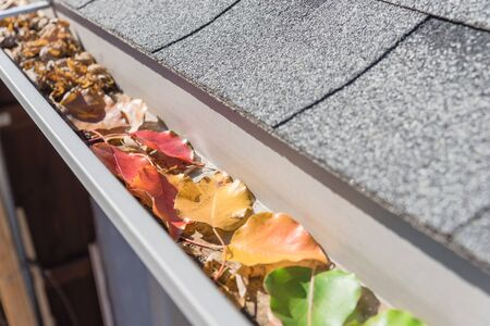 Selective colorful fall foliage of green, yellow, orange, red, dried brown leaves clogged on metal gutter of residential house near Dallas, Texas, USA. Bradford pear leaf crowded on drainage