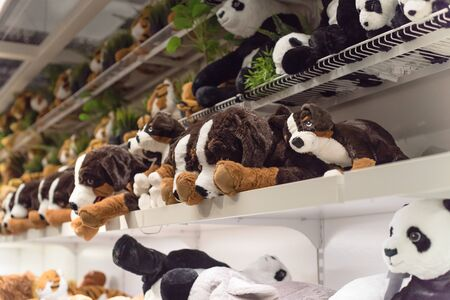 Variety of stuffed animal toys on shelves at retail store in America. Baby bear dolls, plush or cuddly toy at super market. Soft toys background texture pattern Imagens