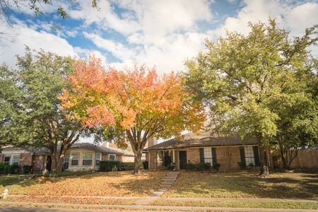 Beautiful front yard of typical single family houses near Dallas in fall season colorful leaves