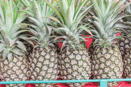 Organic green pineapple with leaves at street market in Geylang, Singapore