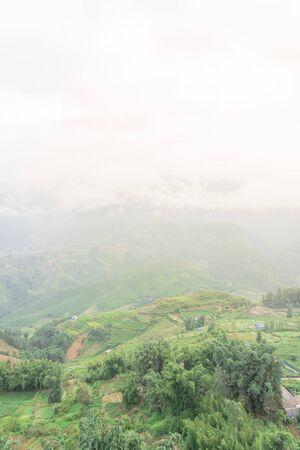 Foggy valley mountain landscape with lush green field terrace rice paddy in Sapa, Northern Vietnam 版權商用圖片