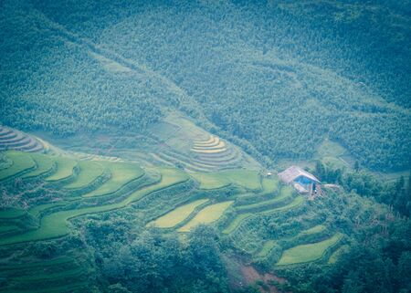 Filtered image aerial lush green terrace rice field with wooden slum house in Sapa, Northern Vietnam