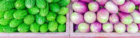 Panoramic vibrant green bitter melon and purple Asian eggplants at vegetable stand in Little India, Singapore