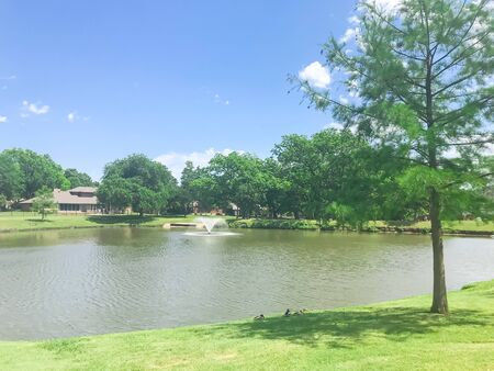 Working water fountain at residential park with clear pond and green tall trees in Coppell, Texas, USA