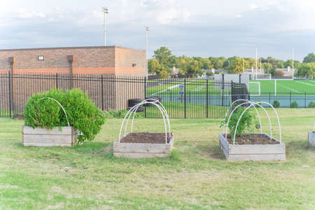 Wooden raised bed garden with PVC pipe cold frame support and football field in background at Texas, USA