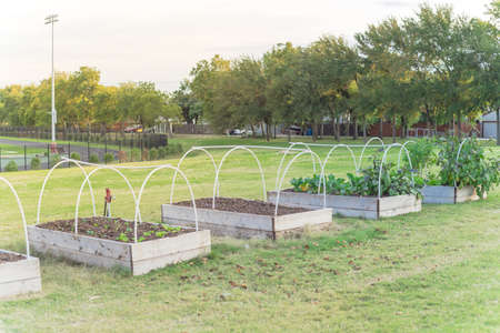 Raised bed garden with PVC pipe cold frame support and running tracks in background at elementary school in USA