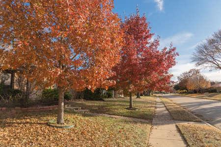 Sidewalk along neighborhood street with pile of fallen leaves in suburban area near Dallas, Texas, America. 免版税图像