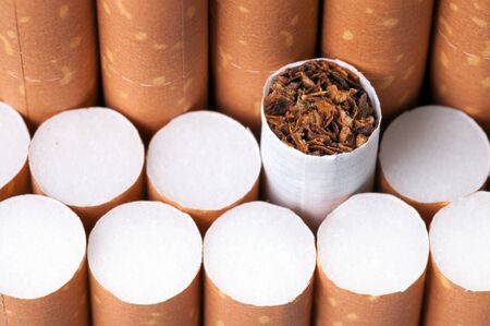 cigarette: Tobacco in cigarettes with a brown filter close up Stock Photo