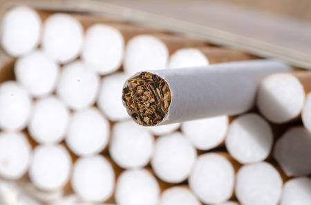 Cigarettes in a pack, Tobacco in cigarettes close up