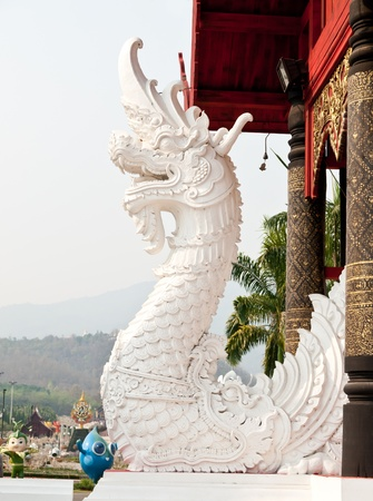 white naga in front of church photo