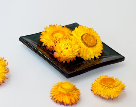 flower on black ceramic bowl in spa  conceps. photo