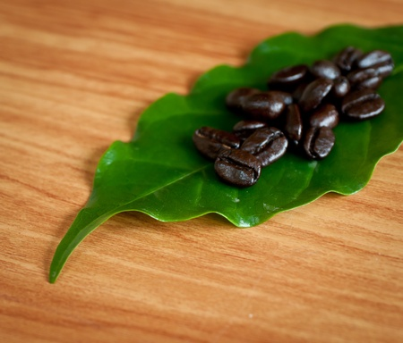 Roasted coffee  beans and coffee leaf  on wood texture  photo