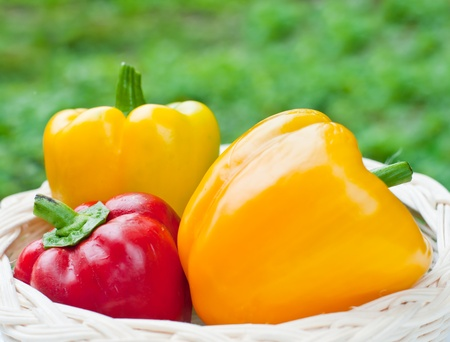 Colored fresh sweet  paprika ( pepper ) in wood basket . Stock Photo - 13802216