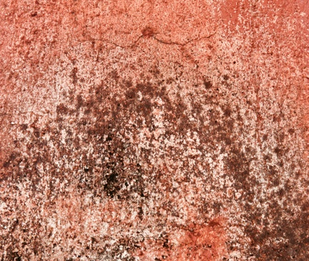 Grunge and Rusty metal texture background. photo