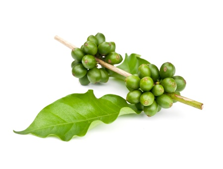 green bean: coffee beans and leaf on white background