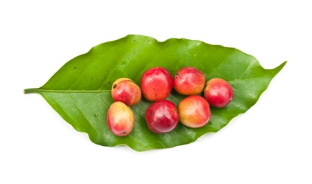 coffee beans and coffee leaf on white background