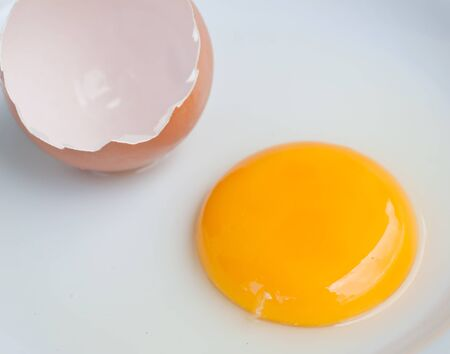 Chicken egg yolk on the disk