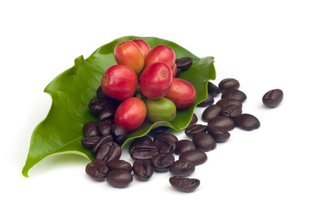 granos de cafe: granos de caf� y el caf� maduro rojo aislado sobre fondo blanco