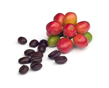 green beans: coffee beans and red  ripe coffee Isolated  on white background