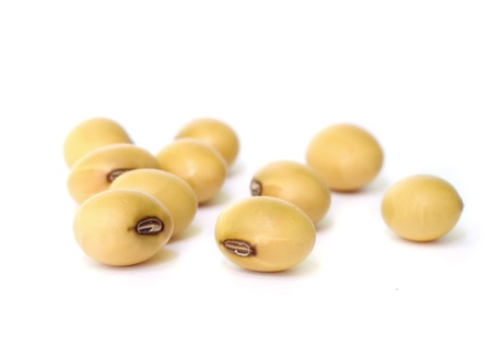 Closeup of soy beans on white background