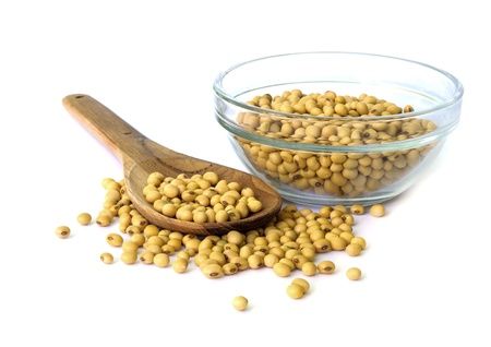 Soybean on bowl isolated on a white background  photo