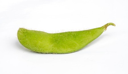 Green soybeans isolated on a white . Stock Photo - 23198463
