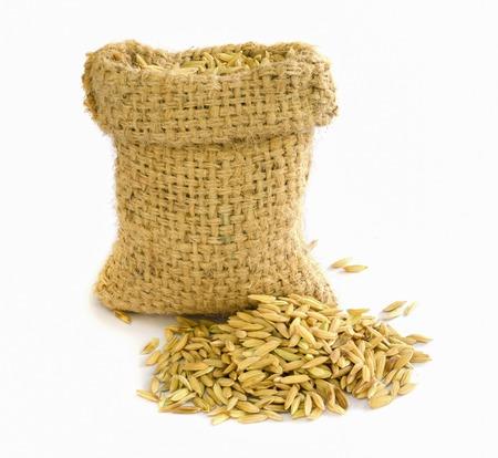 semences de riz paddy dans un sac de toile de jute.