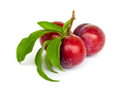 Ripe plums with leaves on white background. photo