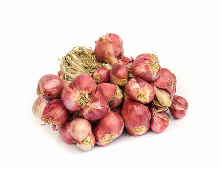 shallot: Shallot onions isolated over white background . Stock Photo