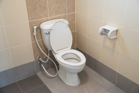 contemporary interior: White toilet bowl in a bathroom.