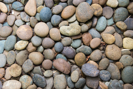 abstract background with dry round pebble stones. Stock Photo