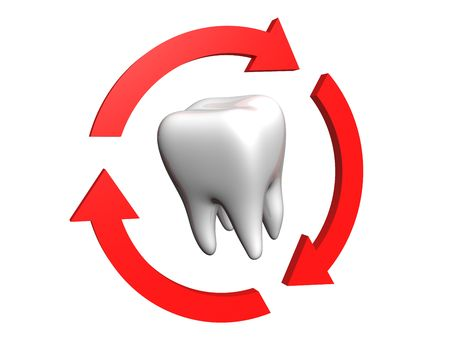 Human tooth rounded red arrows