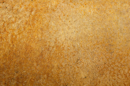 pig skin: Pig skin without fur texture