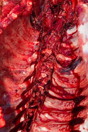karkas: Vers varkensvlees karkas close up Stockfoto