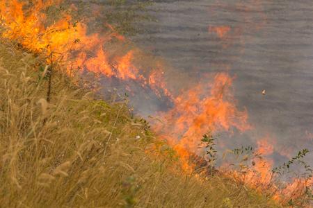 threatens: Fire on the field threatens housing