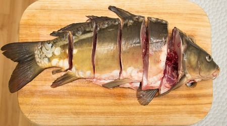 Fresh water fish cut into steaks photo