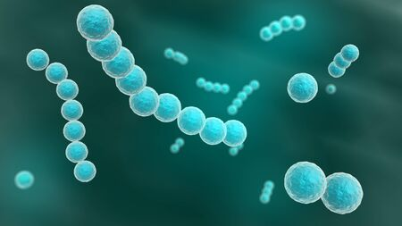 schyzomycete: 3d rendered close up of streptococcus