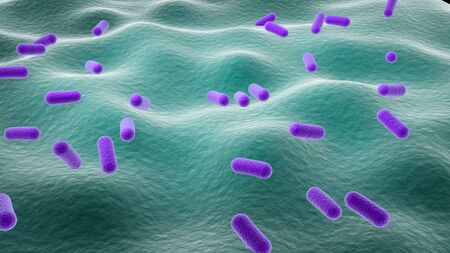 3d rendered close up of isolated lactobacillus.